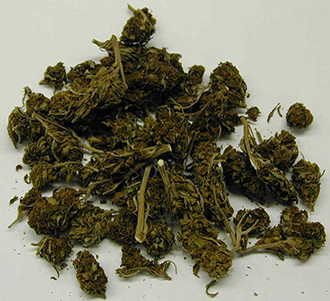PICT - Marijuana - Wikimedia