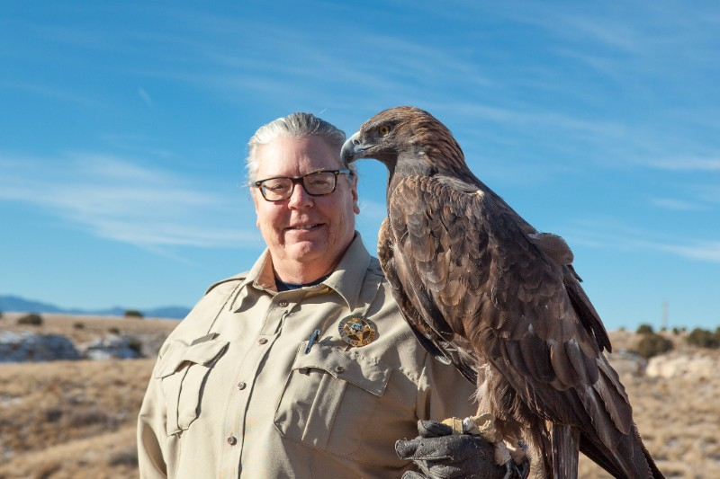 PICT Golden Eagle and Ranger - CPW