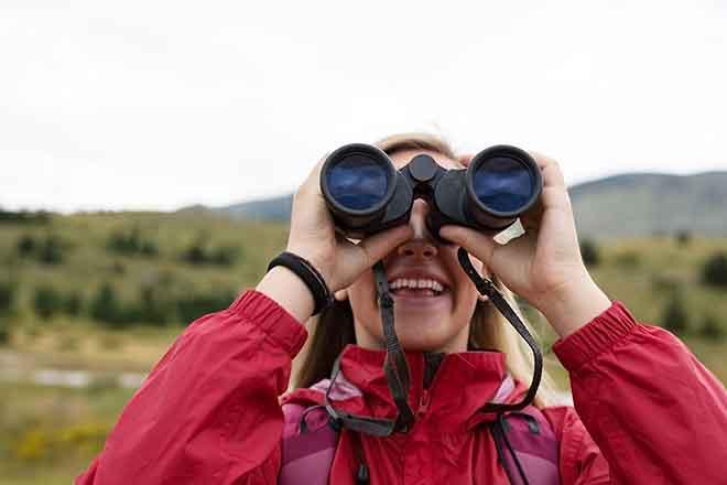 PICT LP Birdwatching - Adobe Stock - Myvisuals