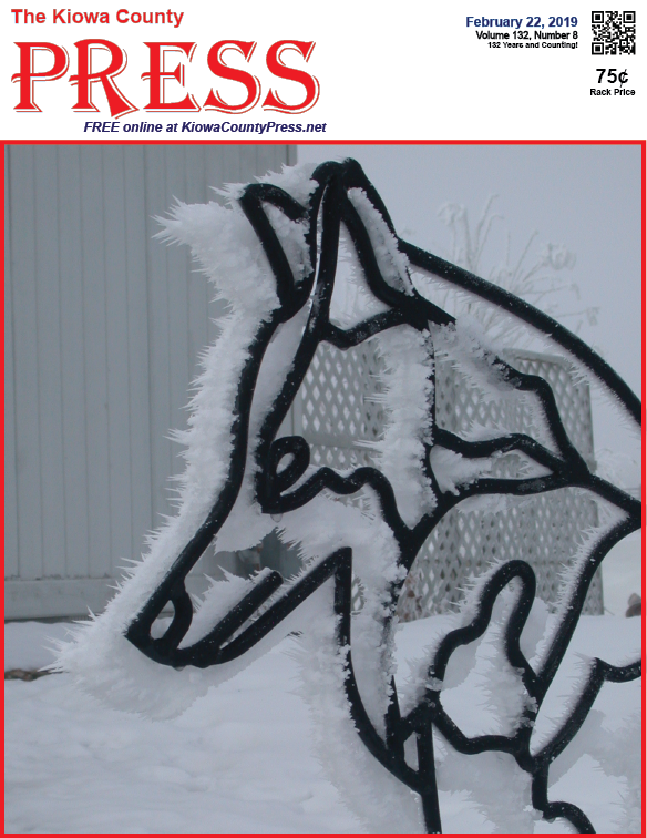Photo of the Week - 2019-02-22 - Frost on Iron Artwork