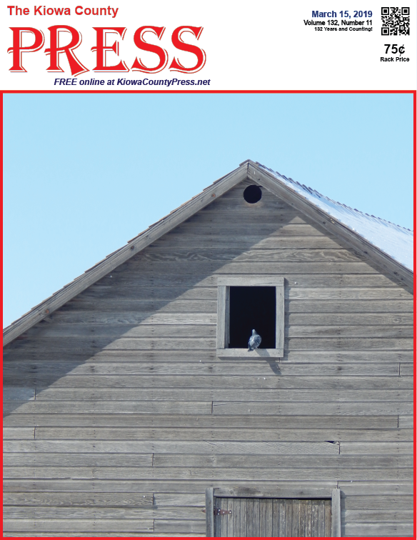 Photo of the Week - 2019-03-015 - Dove in a barn window.