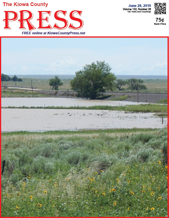 Photo of the Week - 2019-06-28 - Standing water from recent rains near Chivington, Kiowa County, Colorado