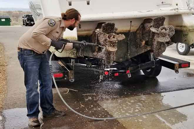 PICT Boat Inspection Cleaning Mussel - CPW