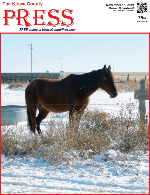 Photo of the Week - 2019-11-15 - Horse standing in snow near Eads, Kiowa County, Colorado.