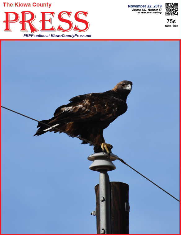 Photo of the Week - 2019-11-22 - Golden eagle perched on a utility pole south of Eads, Kiowa County, Colorado.
