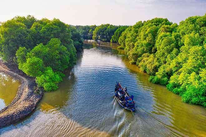 PICT EarthTalk - Indonesia River Forest - Tom Fisk, Pexels