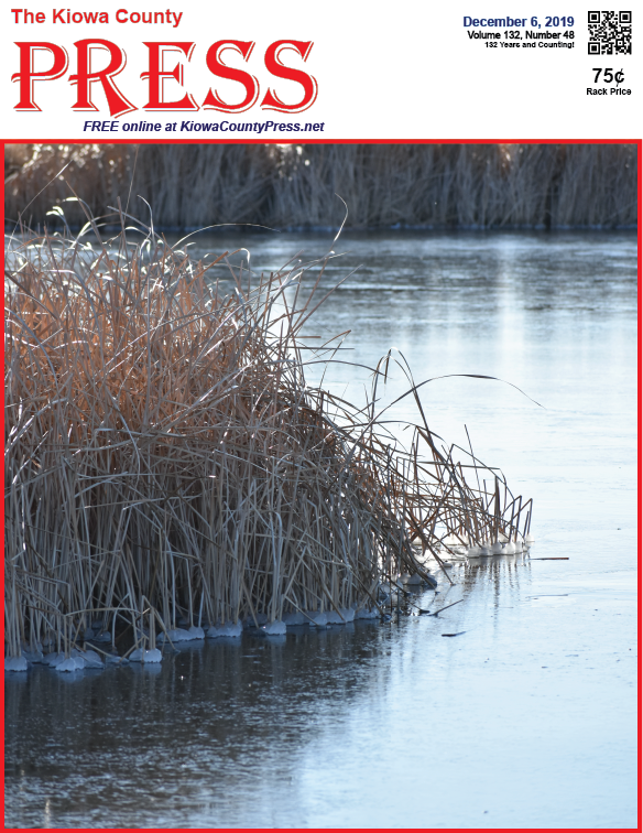 Photo of the Week - 2019-12-06 - Ice round reeds on Jackson's Pond south of Eads in Kiowa County, Colorado.