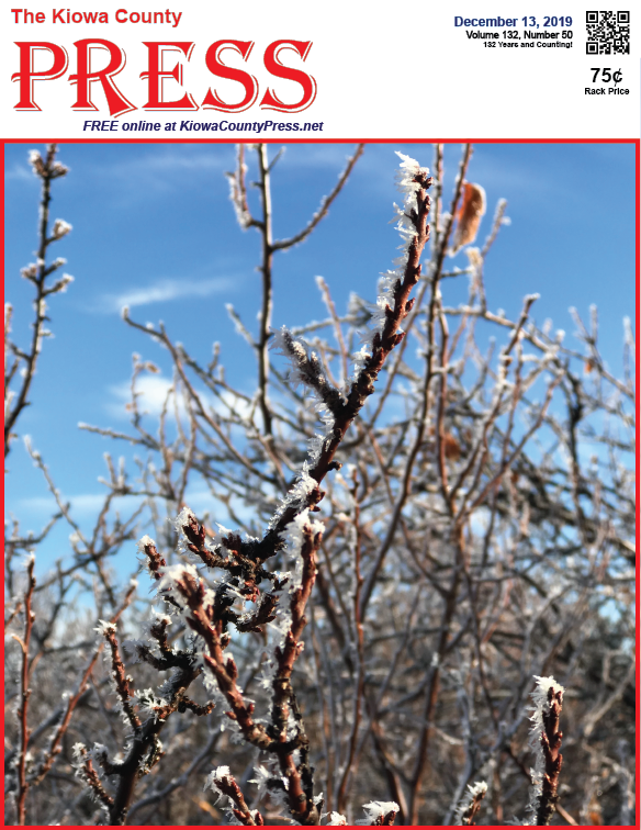 Photo of the Week - 2019-12-13 - Frost on branches near Eads in Kiowa County, Colorado.
