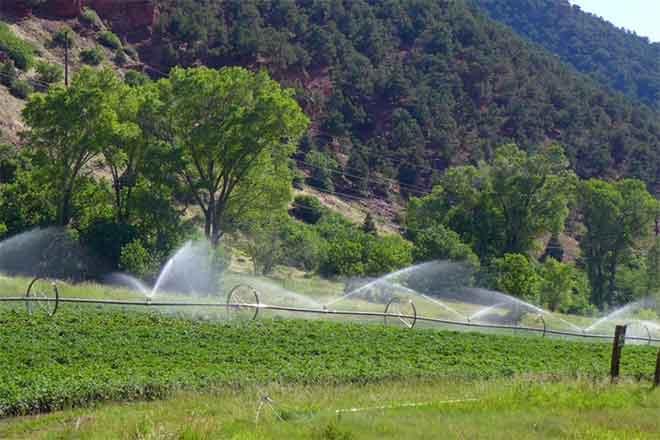 PICT Lower Woody Creek irrigtation - Brent Gardner-Smith - Aspen Journalism