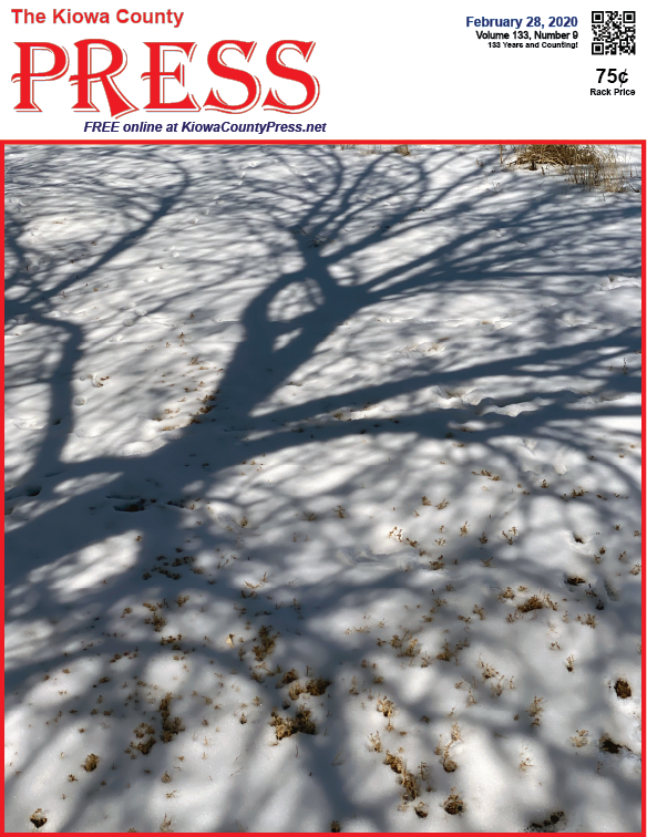 Photo of the Week - 2020-02-21 - Tree shadow and animal track on new snow in Kiowa County, Colorado.