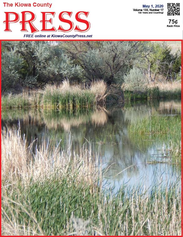 Photo of the Week - 2020-05-01 - Reeds growing on Kiowa Creek south of Eads, Kiowa County, Colorado.