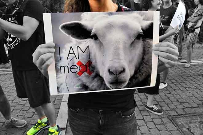 PICT 64J1 Earthtalk animal rights poster - FlickrCC - Elias Tsolis