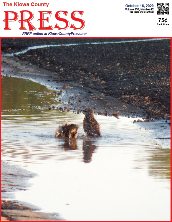 Photo of the Week - 2020-10-16 - Birds bathing in a pool of water in Kiowa County, Colorado.