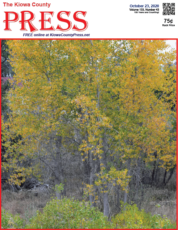 Photo of the Week - 2020-10-23 - Trees showing fall colors in Kiowa County, Colorado.