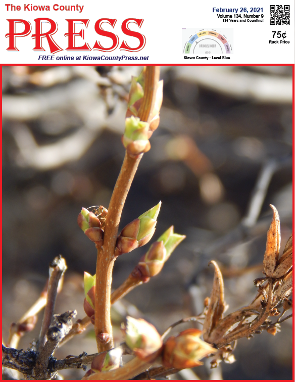 Photo of the Week - 2021-02-26 lilac leaf buds could soon appear to mark the start of spring in Kiowa County, Colorado - Chris Sorensen