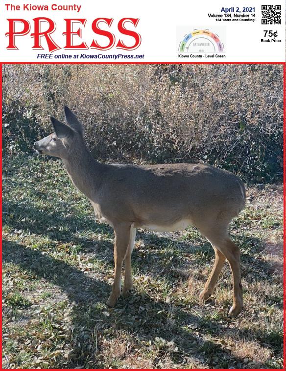 Photo of the Week - 2020-04-02 Deer wandering through a yard in Kiowa County, Colorado - Chris Sorensen