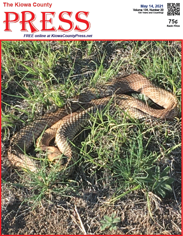 Photo of the Week - 2020-05-14 - Snakes are out in Kiowa County, Colorado - Jeanne Sorensen