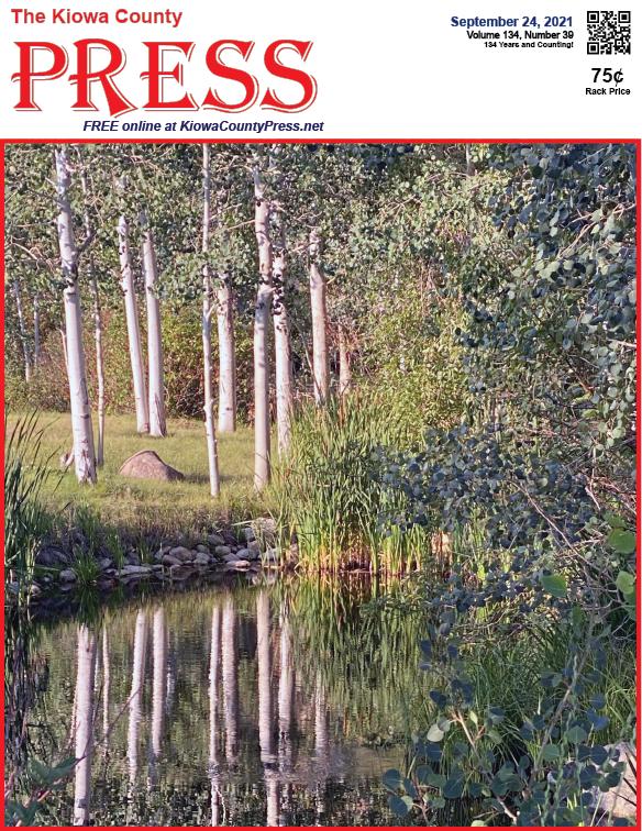 Photo of the Week - 2020-09-24 Aspen trees in Colorado's mountains - Chris Sorensen
