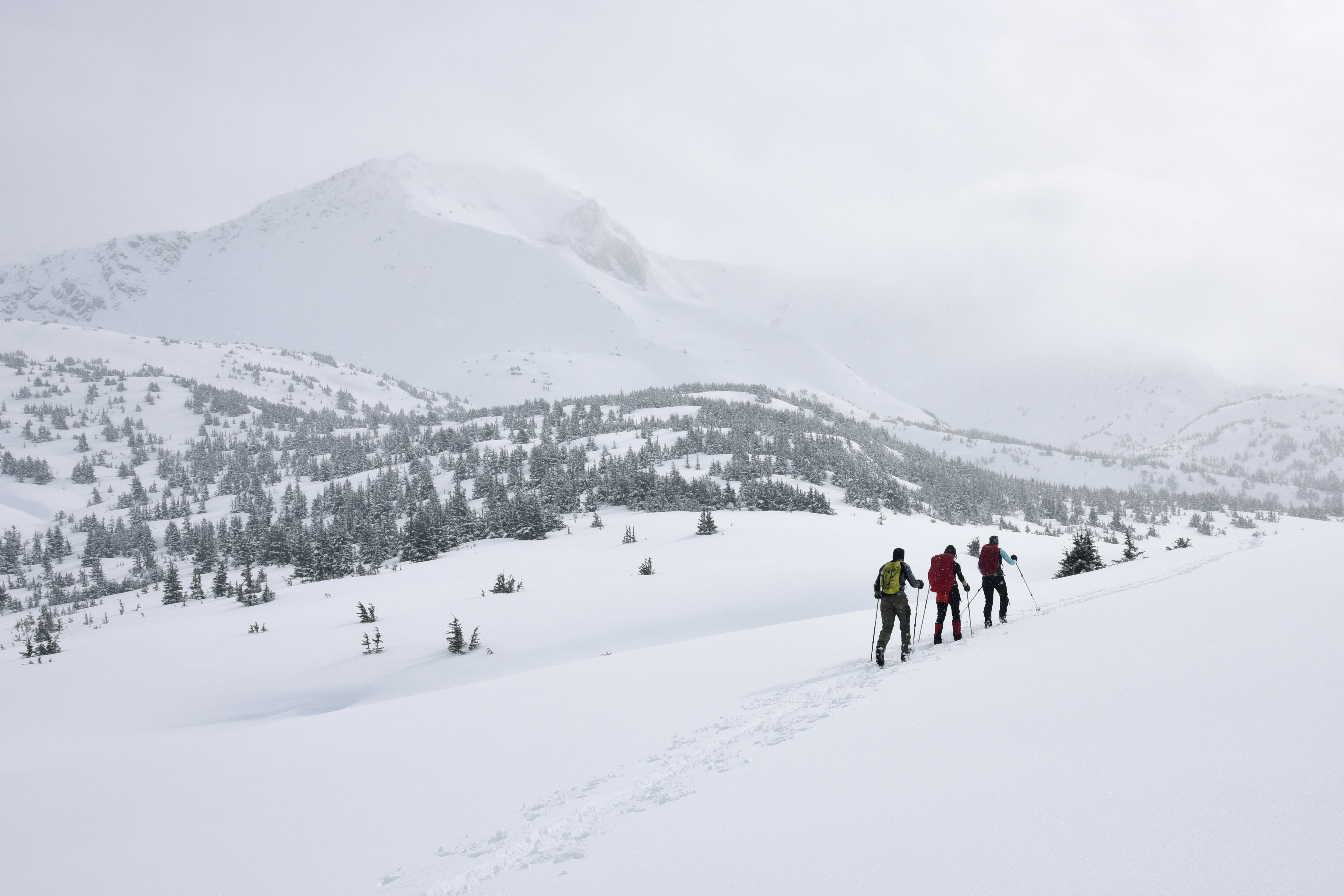 The Top 10 Backcountry Ski Areas In Colorado