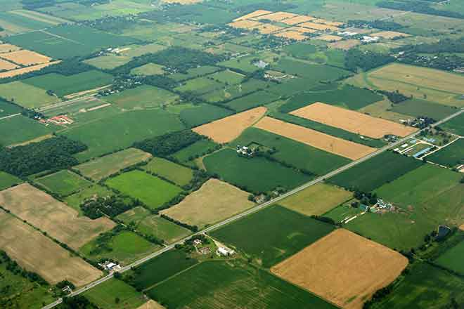 Agriculture - Fields from the Air - iStock - IMNATURE