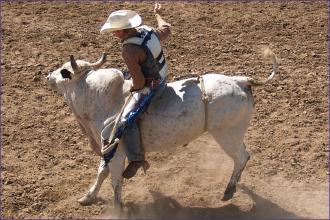PROMO Bull Riding