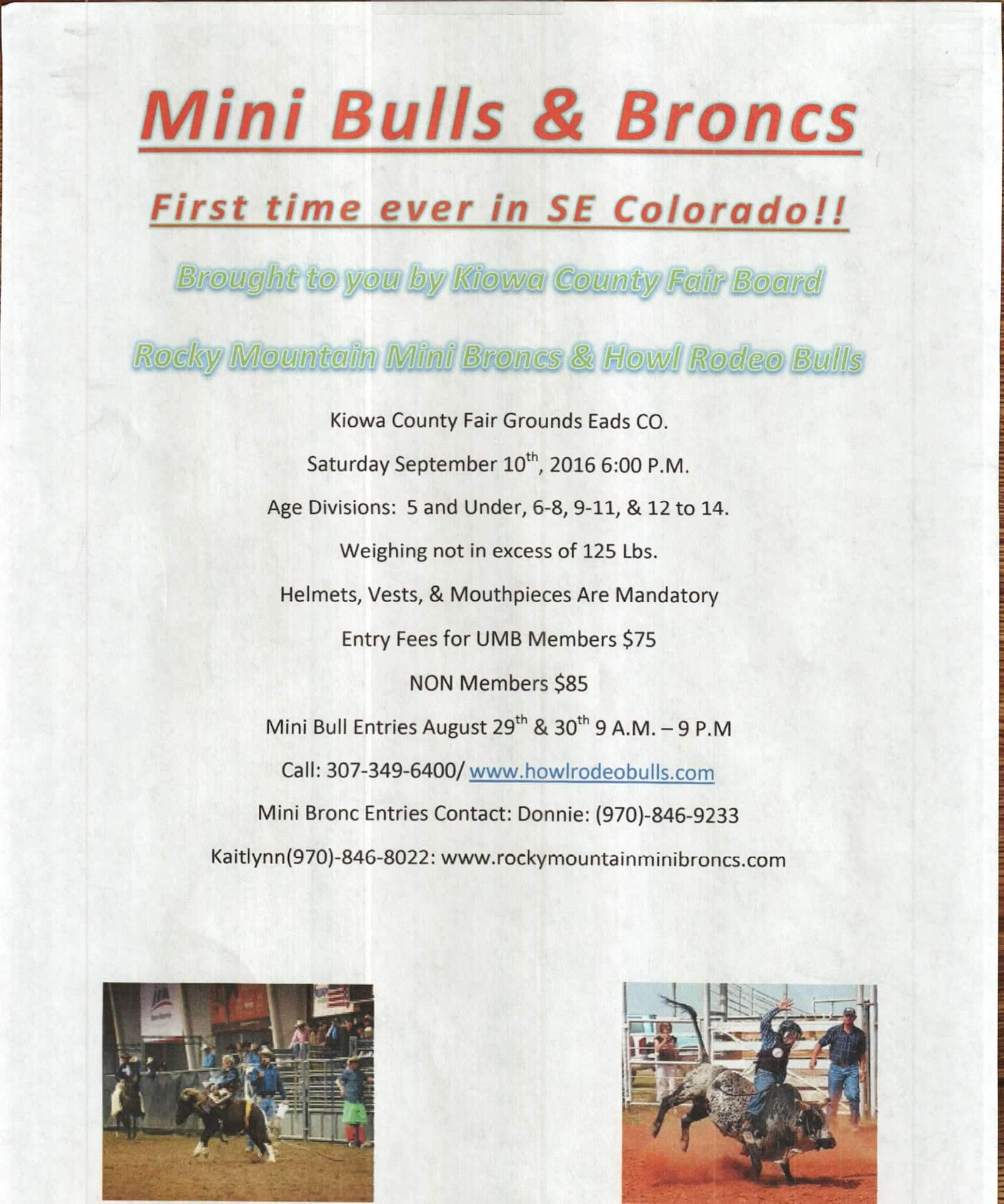 Mini Bulls at Kiowa County Fair