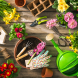 PROMO 660 x 440 Garden - Tools Flowers Plants Glove Bird House - iStock
