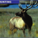 PROMO Hunting - Elk