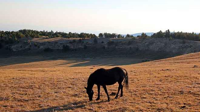 U.S. Interior secretary signs order 'formally establishing' BLM headquarters in Grand Junction