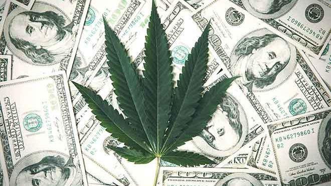 Colorado sold $202M of marijuana in July but sales continue to slow