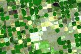 PROMO 64J1 Agriculture - Center Pivot Fields Irrigation Green Farm - flickrcc - USGS - public domain