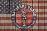 PROMO Military - National Guard Logo US Flag American - iStock - Phil Feyerabend