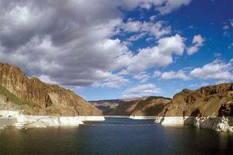 States jointly restoring wildlife habitat along lower Colorado River