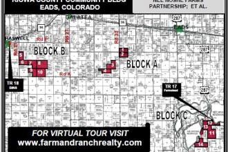 Auction: 7,000+ Acre Crop Land & More