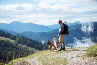 4 Dog-Friendly Activities in Colorado to Enjoy This Summer