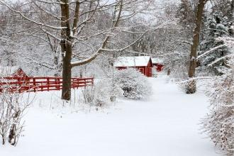 Tips for Surviving Winter on Your Hobby Farm