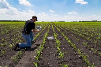 AgTech: The Future of Farming Meets the Present