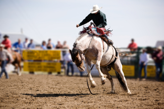 4 Colorado Rodeos for You to Look Forward to This Summer