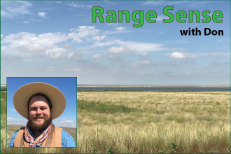 Range Sense with Don