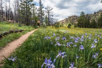 5 of the Best Scenic Running Trails in Colorado