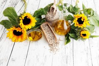 The Benefits and Uses of Colorado Sunflower Oil