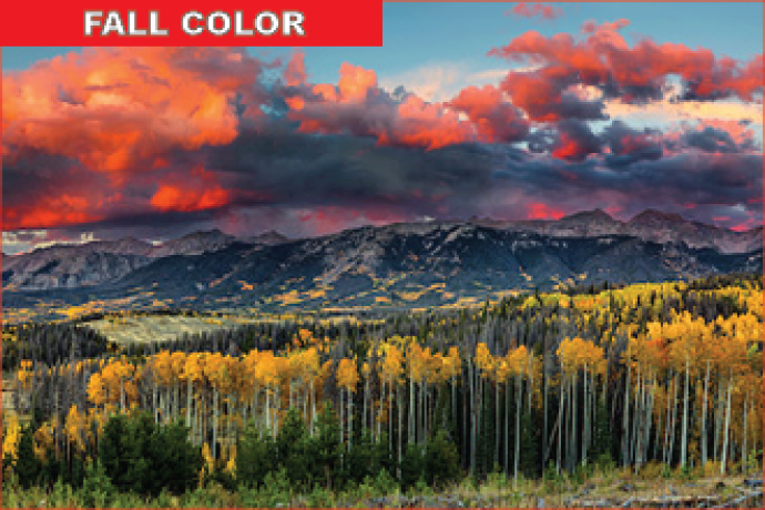 PROMO Colorado Parks and Wildlife Fall Color