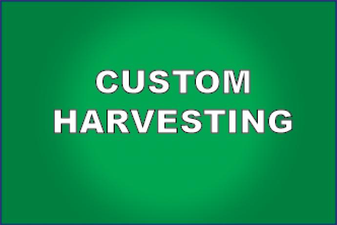 PROMO 330 x 220 Custom Harvesting