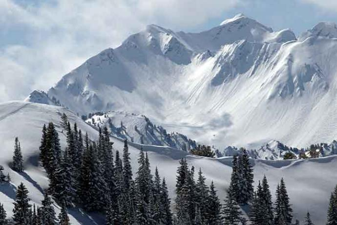 PROMO 660 x 440 Miscellaneous - Snow Mountain Trees Winter - iStock