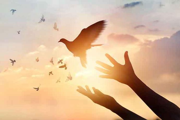 PROMO 660 x 440 Faith - Dove Hands Sky Sun Silhouette - iStock - ipopba