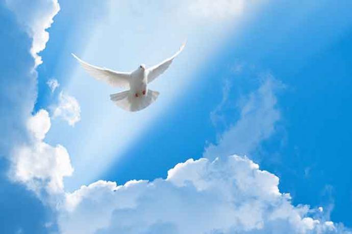 PROMO Faith - Religion Animal Bird Dove Clouds - iStock - akinshin