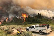 PICT Pine Gulch Fire in Mesa County north of Grand Junction in August 2020.