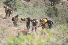 PICT Firefighters building line to help contain the Grizzly Creek Fire