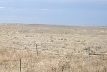 Plains - Northern Morgan County
