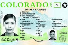 PICT Sample Colorado Driver License - DOR
